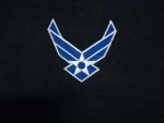 US Airforce Logo 2 wing patch