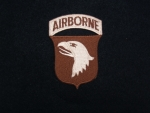 US Army 101st Airborne Desert Patch